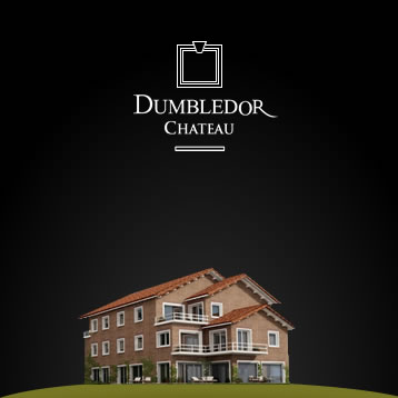 Dumbledor Chateau